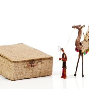 Nativity on camel